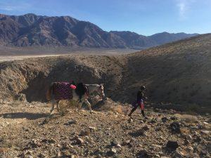 Tera Allen Death Valley BF HA