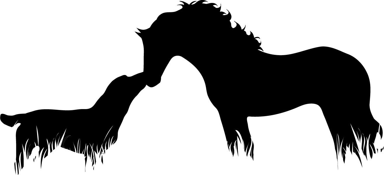 blog horse and dog