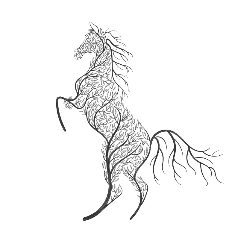 hoof armor_activities horse