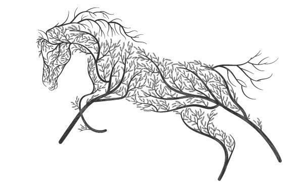 hoof armor_home horse